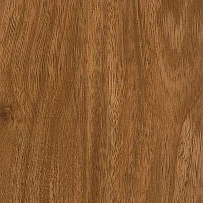 Armstrong Luxury Vinyl Tile Natural Living   Tampa, Florida   Exclusive  Flooring Center